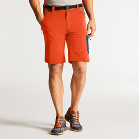 Dare 2b Paradigm Shorts Men Pumpkin